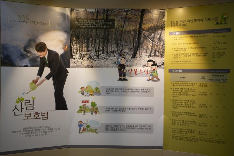 산불예방의 중요성을 일깨워 주는 강릉 '숲사랑홍보관'